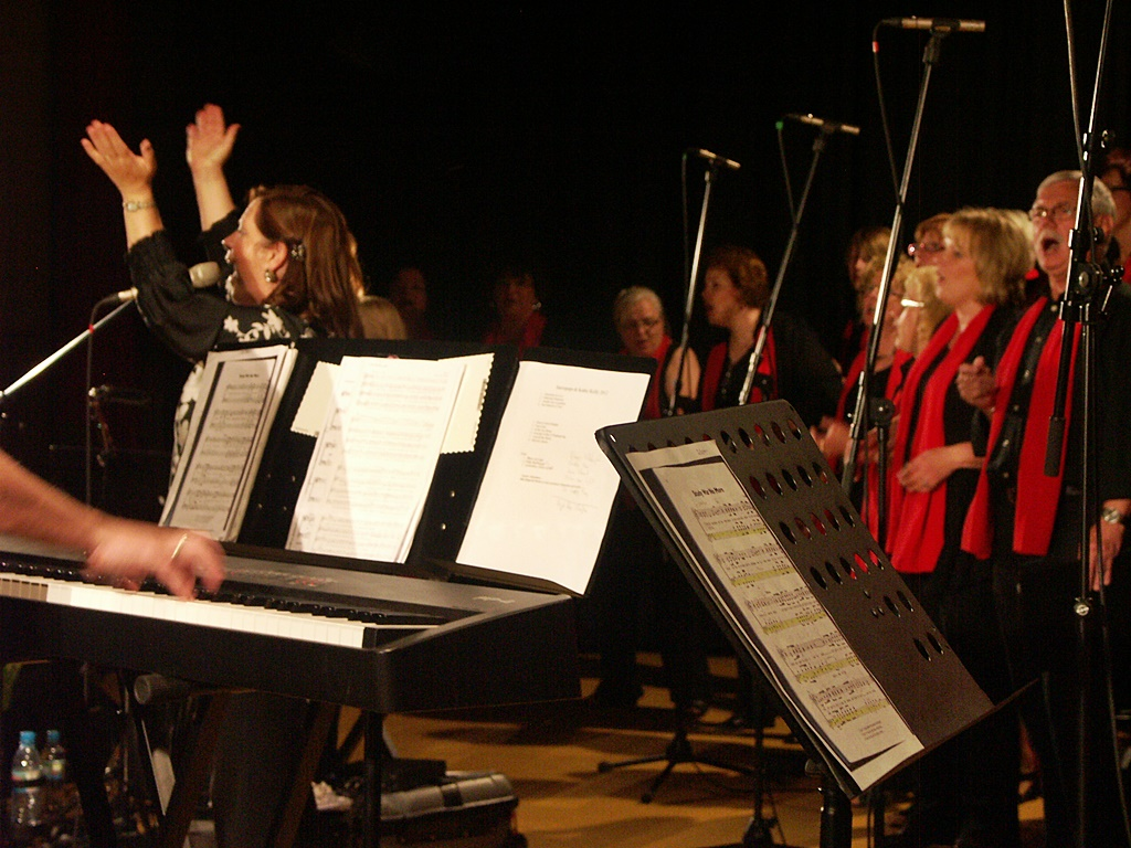 2012-Konzert Mit Kathy Kelly In Waldalgesheim-116